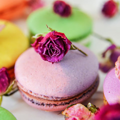 bright colored macaroons, French dessert, close-up, macro