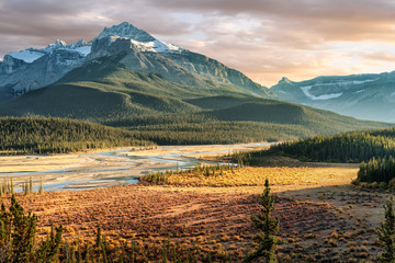 Foto op Canvas Donkergrijs Saskatchewan River Crossing during Autumn golden hour of the Icefields Parkway