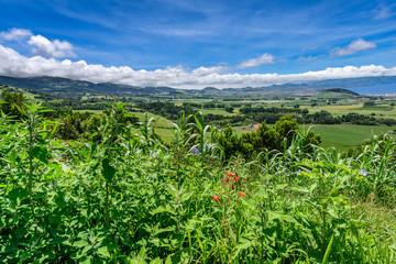 Landschaft auf den Azoren Sao Miguel