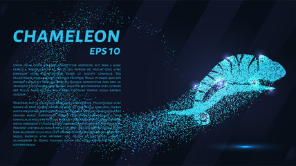 Chameleon consists of particles. Chameleon consists of dots and circles. Blue chameleon on a dark background