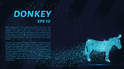 The donkey is made up of particles. The donkey consists of dots and circles. Blue donkey on a dark background