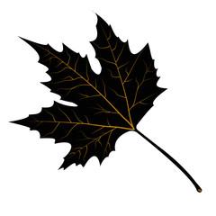 maple leaves black silhouette vector illustration