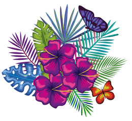 tropical and exotics flowers with butterflies vector illustration design