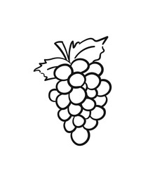 Bunch of grapes with leaf sketch icon for web, mobile and infographics. Hand drawn bunch of grapes vector icon isolated on white background.