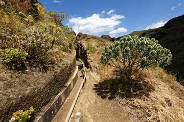 Teneriffa - Wandern im Anaga-Gebirge