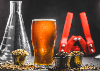 Homebrew Honey Brown Beer, Different Barley and Brewing Equipment