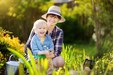 Beautiful woman and her cute son planting seedlings in bed in the domestic garden at summer day