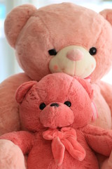 Close up doll of pink bear.