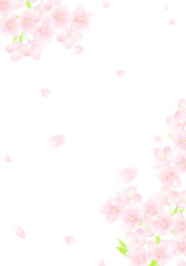 さくら 桜吹雪 キラキラ イラスト