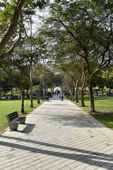Park view in Zabeel park, Dubai, United Arab emirates