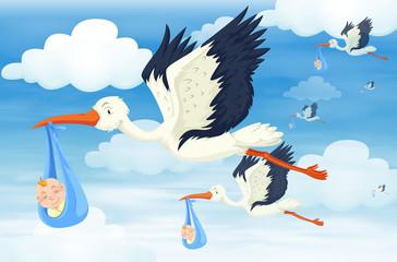 Many birds with newborn babies in sky