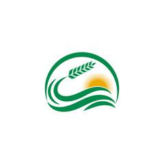 Simple wheat logo design illustration for bakery