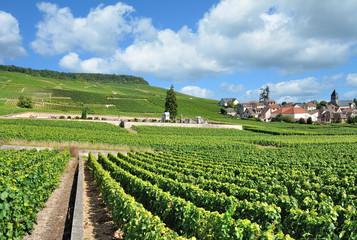 der bekannte Weinort Oger nahe Epernay in der Champagne region,Frankreich Wall mural
