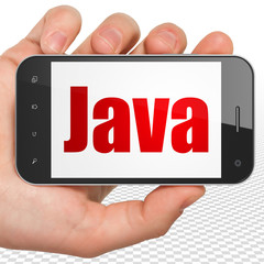 Database concept: Hand Holding Smartphone with red text Java on display, 3D rendering