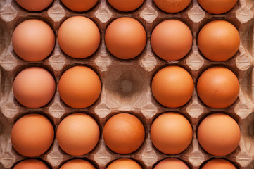 Fresh unbroken brown chicken eggs lie in a special cardboard tray