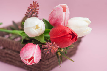 Spring flower bouquet. Pink, White and Red Tulip flower Bouquet. Pink Background. Greeting.