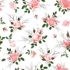 Vintage Floral Seamless Background with Blooming pink Roses, Vector Illustration