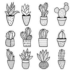 Set of different kinds of cactuses in flower pots. Sketchy vector pattern.