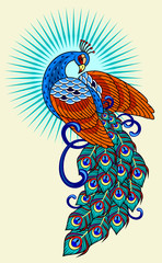 Peacock, old school tattoo image