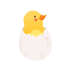 Cute baby chicken hatching, funny cartoon bird character sitting in egg shell vector Illustration on a white background
