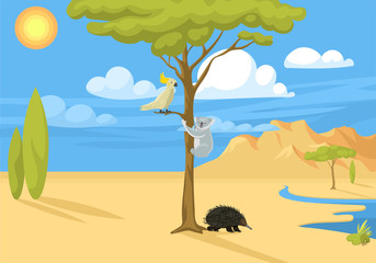 Australia wild background landscape animals cartoon popular nature flat style australian native forest vector illustration.