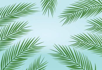 Palm leaves background. vector illustration