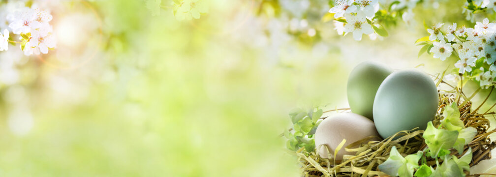 Easter eggs with sunny spring background