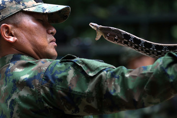 "A Thai Navy instructor demonstrates how to catch a snake during a jungle survival exercise as part of the ""Cobra Gold 2018"" (CG18) joint military exercise, at a military base in Chonburi province"