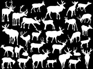 thirty deer silhouettes on black