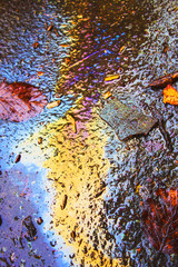 Oil Petrol Rainbow Leak on Pavement