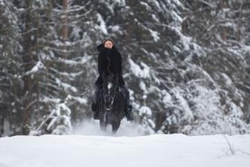 Black Horse running in snow on Winter background