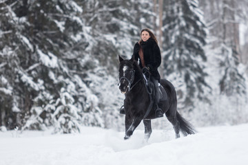 Black Horse running in snow on Winter background