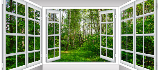 Canvas Prints Green sunrise view from the window