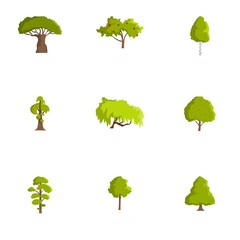 Wood icons set. Cartoon set of 9 wood vector icons for web isolated on white background