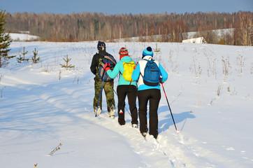 Архангельская область, Плесецкий район. Туристы на лыжах идут по заброшенной деревне Михайловская (Исаковская) в феврале
