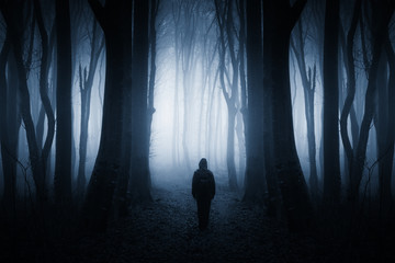 mysterious figure in dark fantasy forest at night