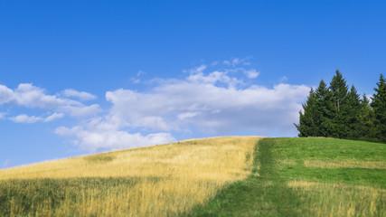 warm summer hill