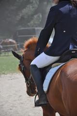cavalier cheval équitation veste concours