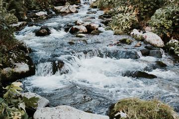 Rapid mountain river among the rocks
