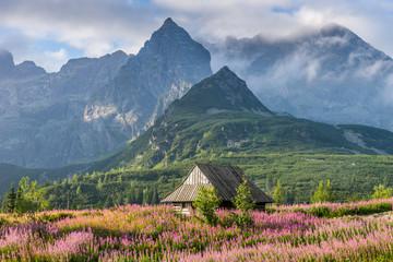 Obraz Tatra mountains landscape - fototapety do salonu