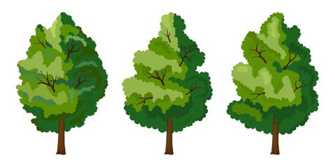 Set of three summer tree