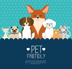 dogs and cats pets friendly vector illustration design