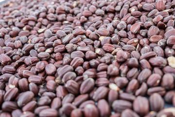 Jojoba beans background. Selective focus