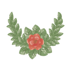composition of a single red flower surrounded by green leaves
