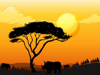 Silhouette scene with rhino in the field