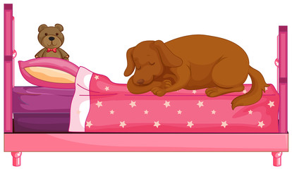 Dog slepping on pink bed