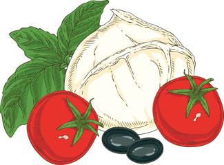 White Buffalo Mozzarella and Vegetables