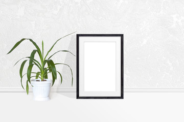 Photo frame and Yucca plant in flower pot near white textured wall. Interior decor mockup