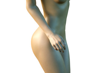 3D Illustration of the Nude girl closeup belly