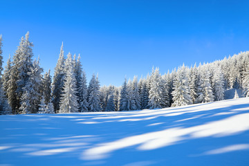 Spectacular panorama is opened on mountains,  trees covered with white snow,  lawn and blue sky with clouds. The game of light and shadow beautifully plays with volumes.